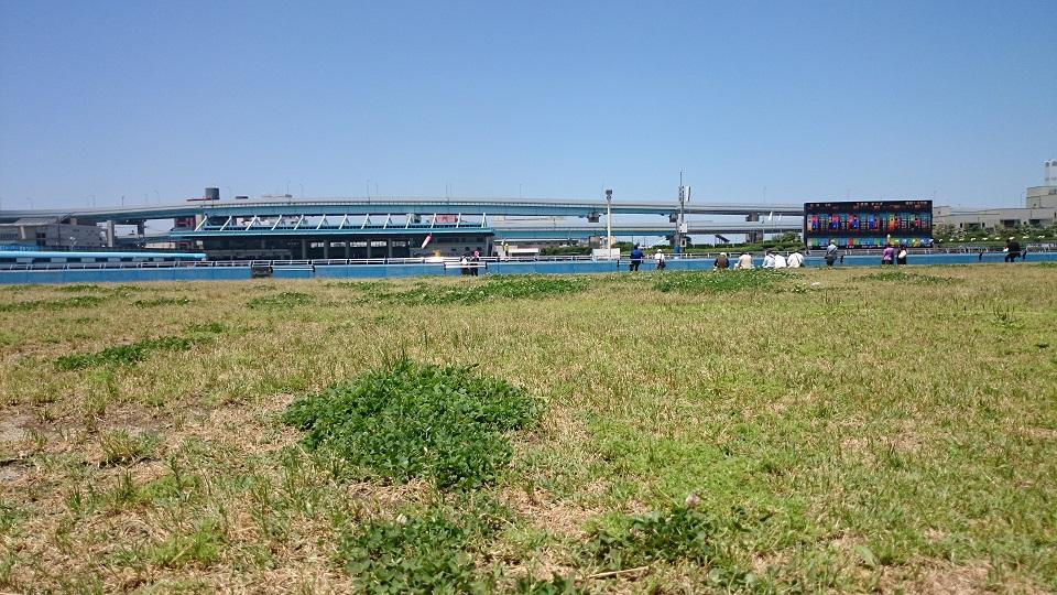 久しぶりに競艇場に行きました